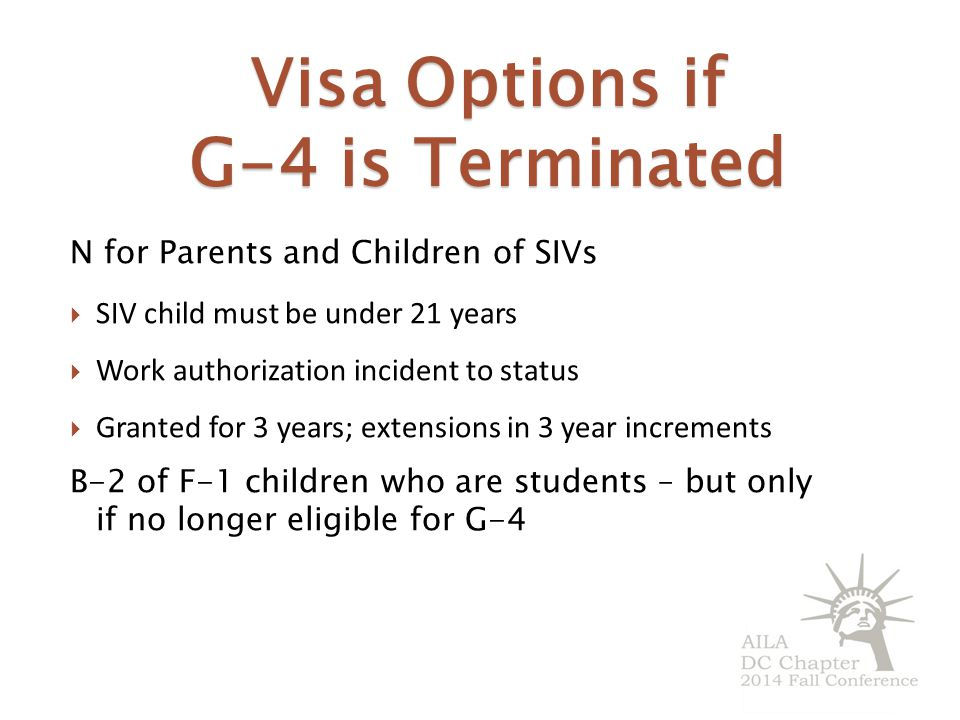 Visa Options if G-4 is Terminated