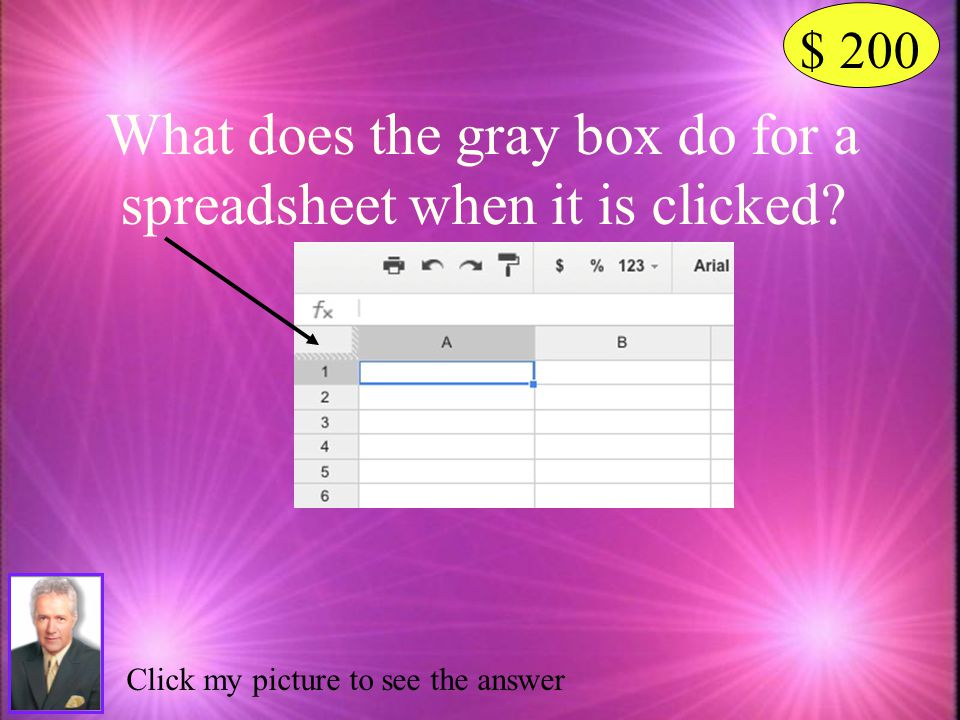 What does the gray box do for a spreadsheet when it is clicked