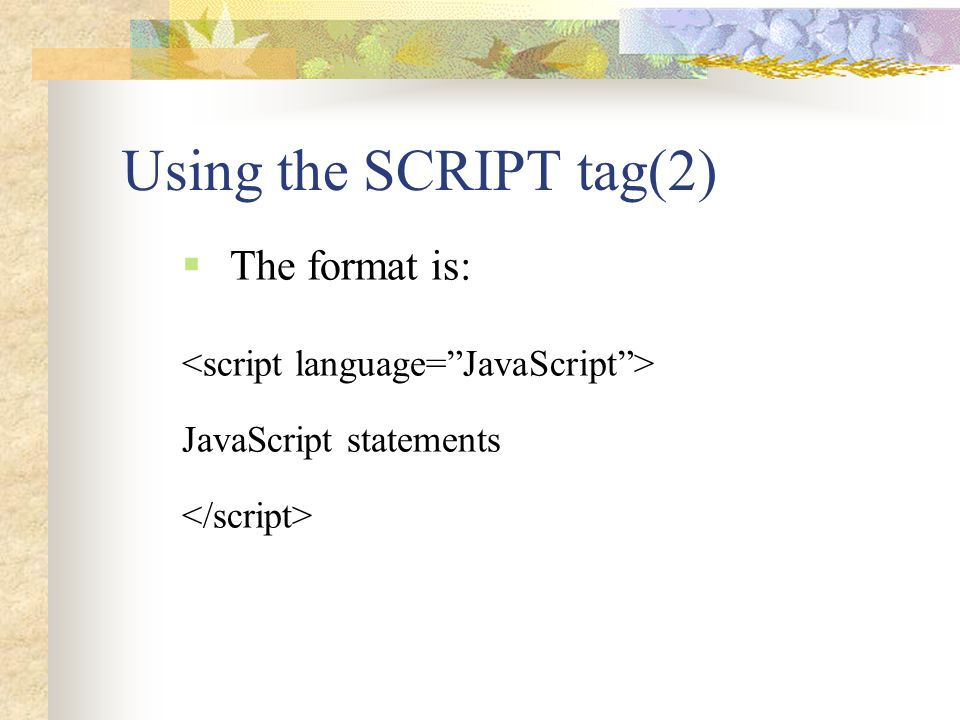 Using the SCRIPT tag(2) The format is: