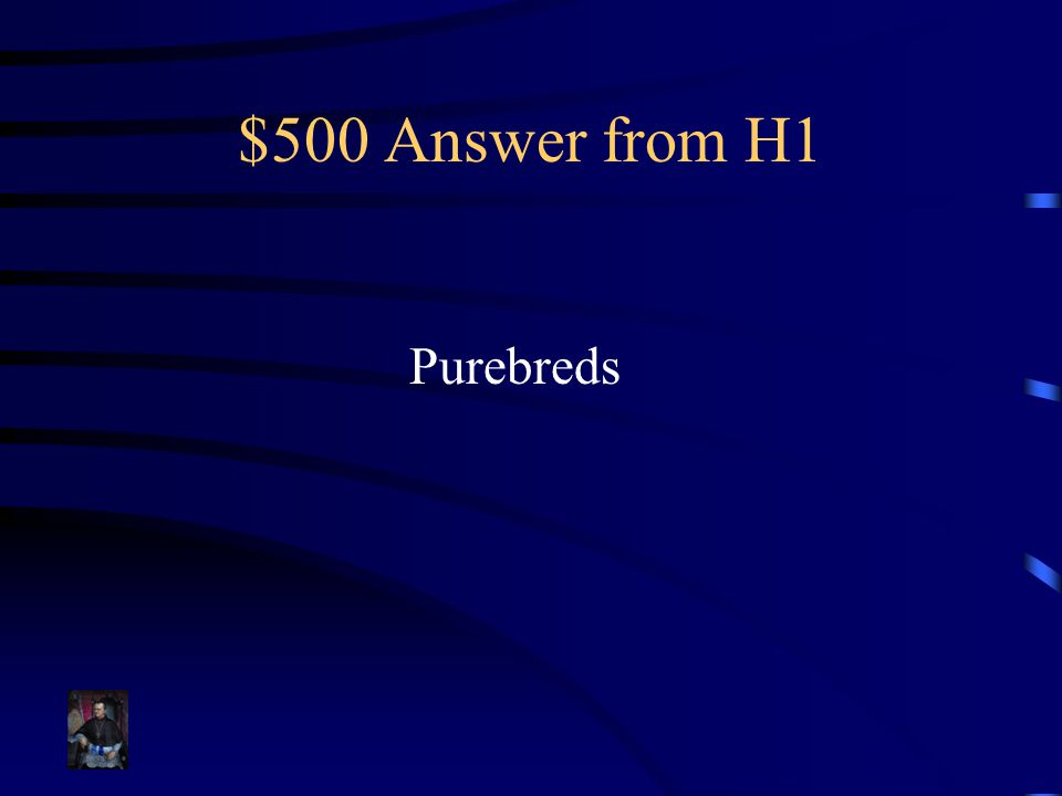 $500 Answer from H1 Purebreds