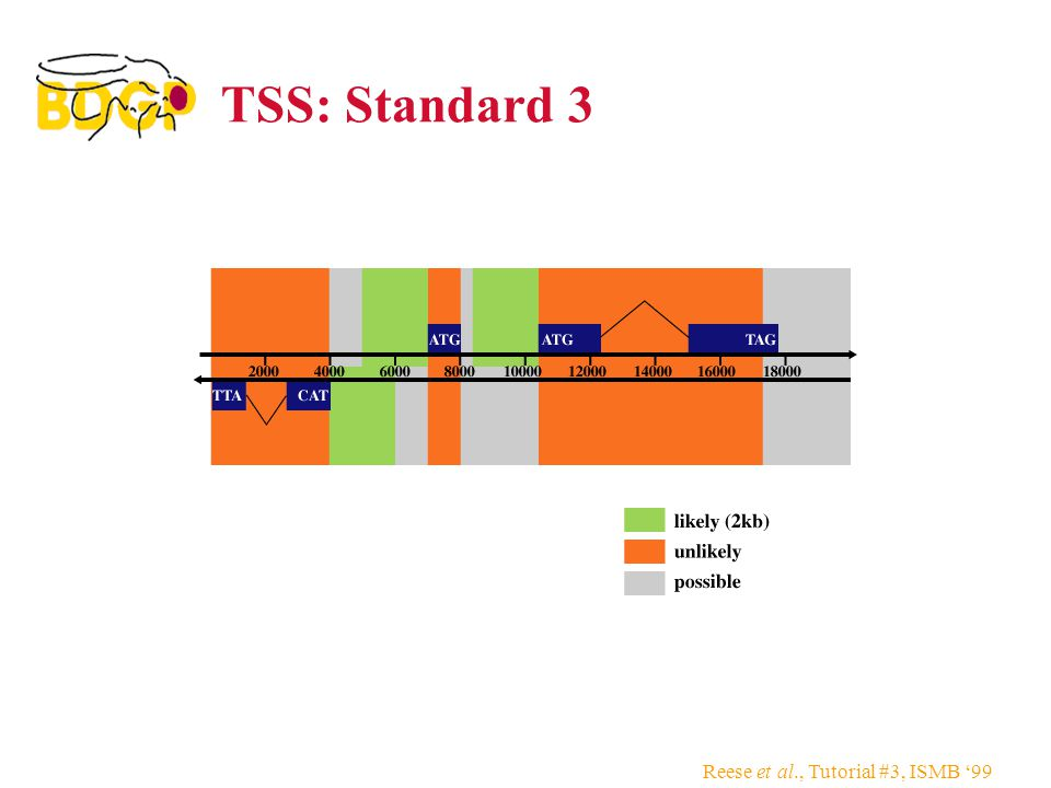 TSS: Standard 3