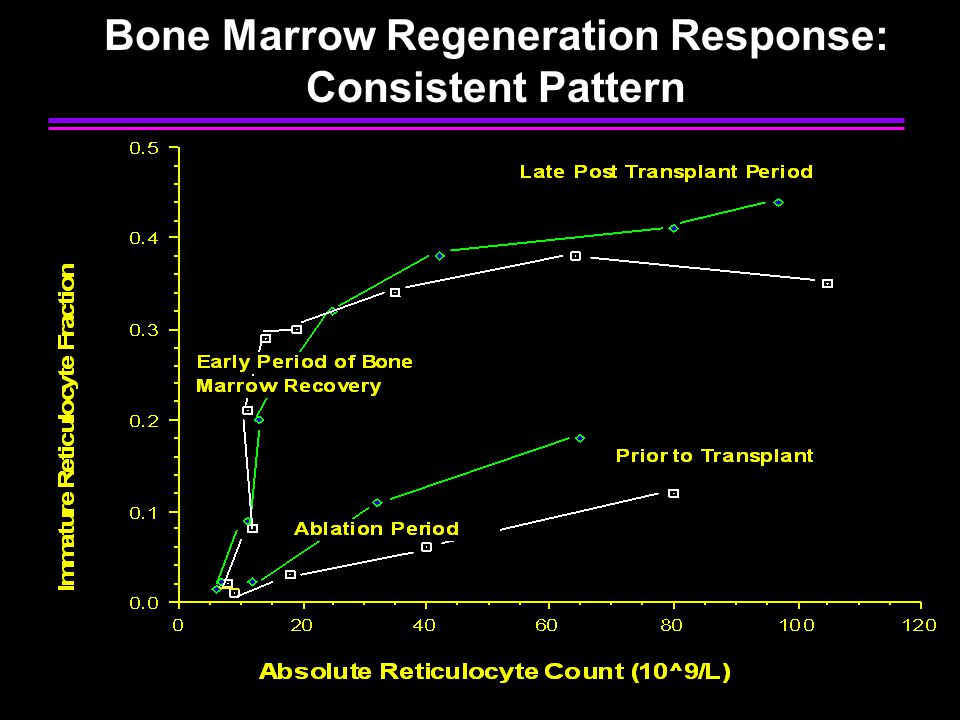 Bone Marrow Regeneration Response: Consistent Pattern