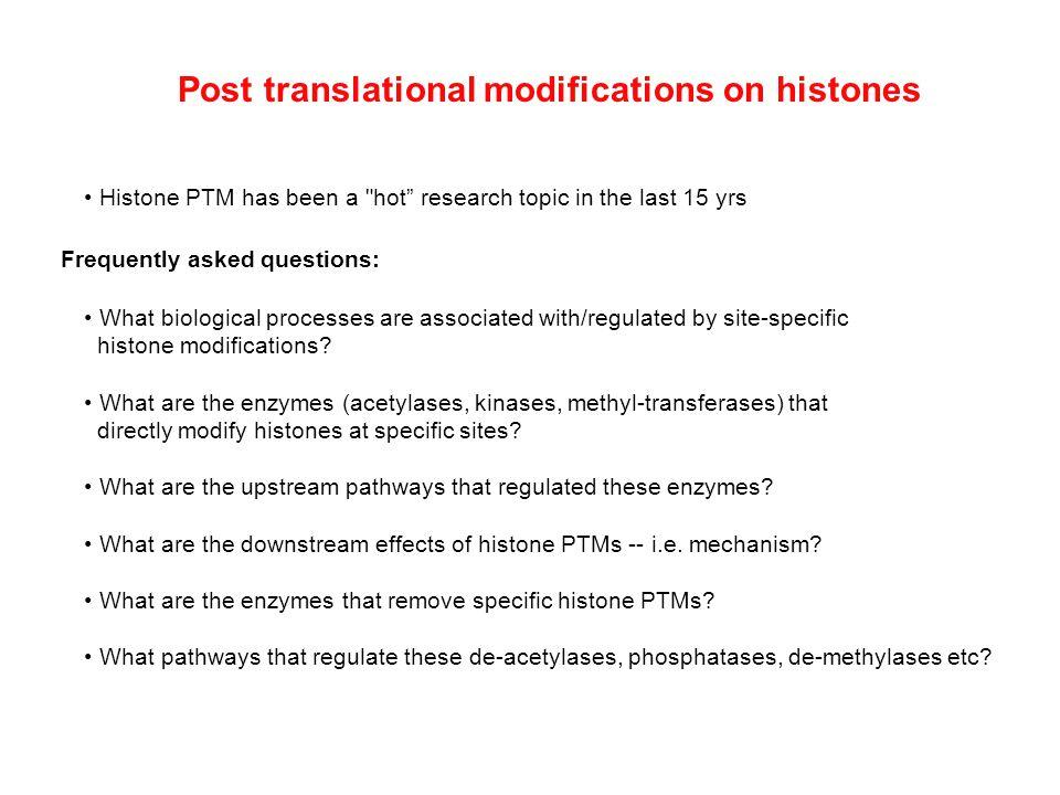 Post translational modifications on histones