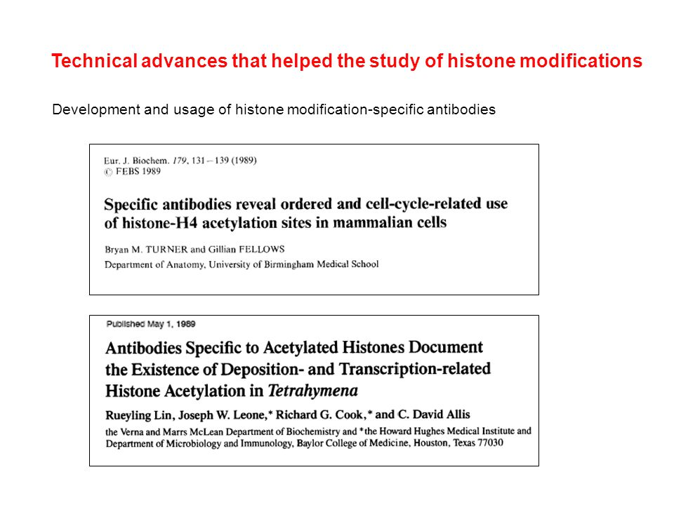 Technical advances that helped the study of histone modifications