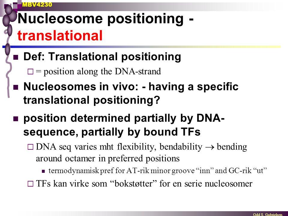 Nucleosome positioning - translational