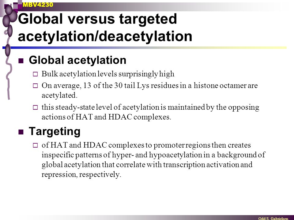 Global versus targeted acetylation/deacetylation