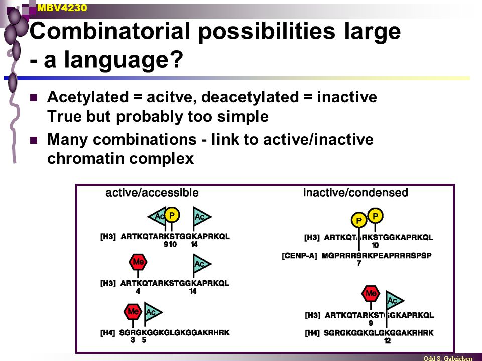 Combinatorial possibilities large - a language