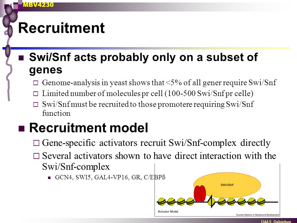 Recruitment Recruitment model