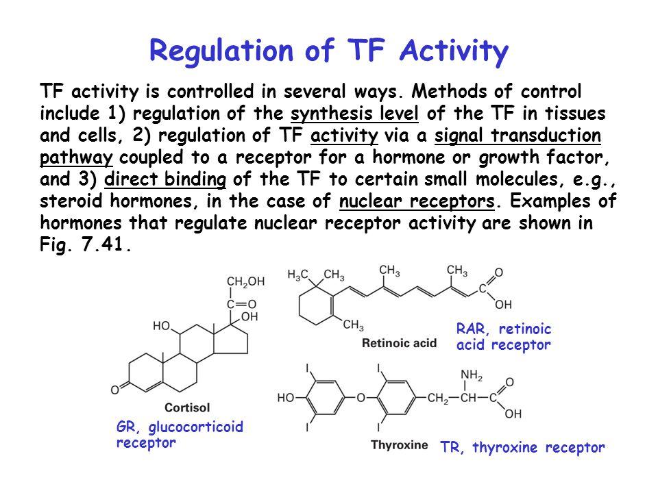 Regulation of TF Activity