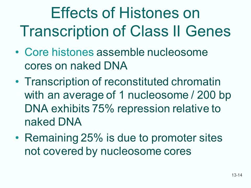 Effects of Histones on Transcription of Class II Genes
