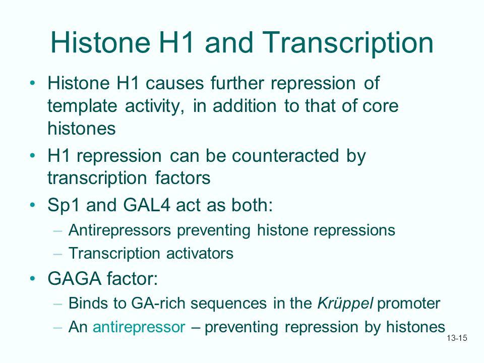 Histone H1 and Transcription