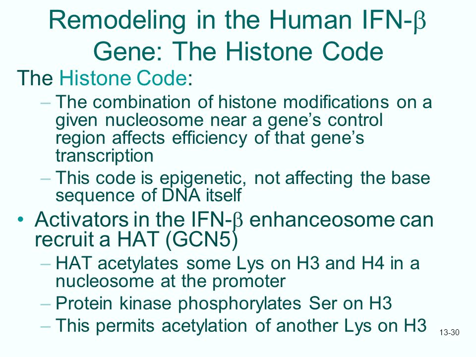 Remodeling in the Human IFN-b Gene: The Histone Code