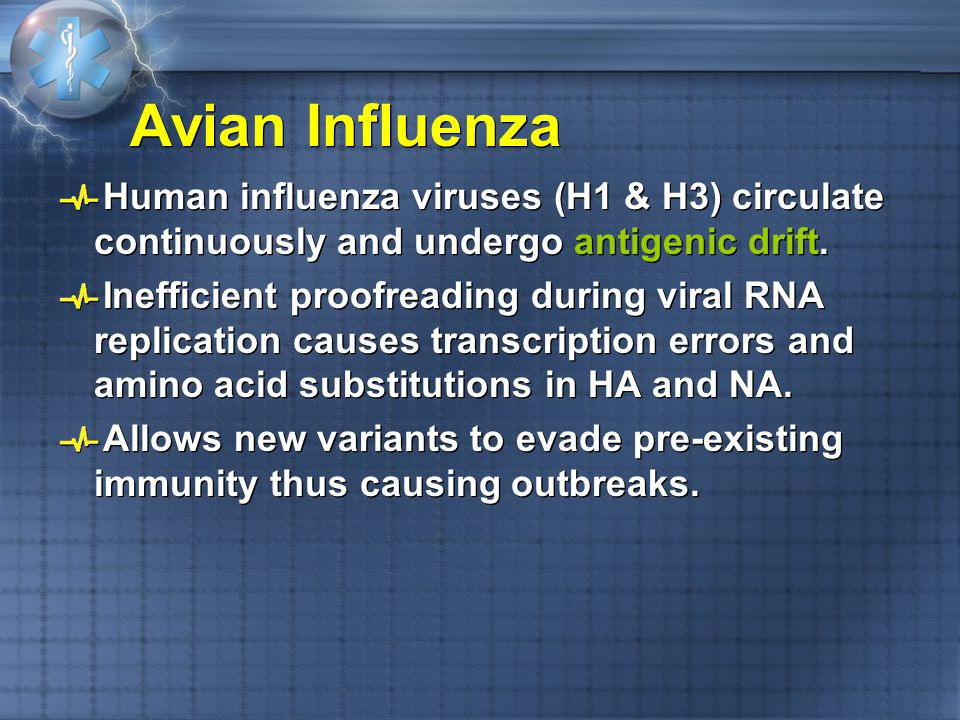 Avian Influenza Human influenza viruses (H1 & H3) circulate continuously and undergo antigenic drift.