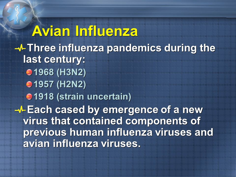 Avian Influenza Three influenza pandemics during the last century: