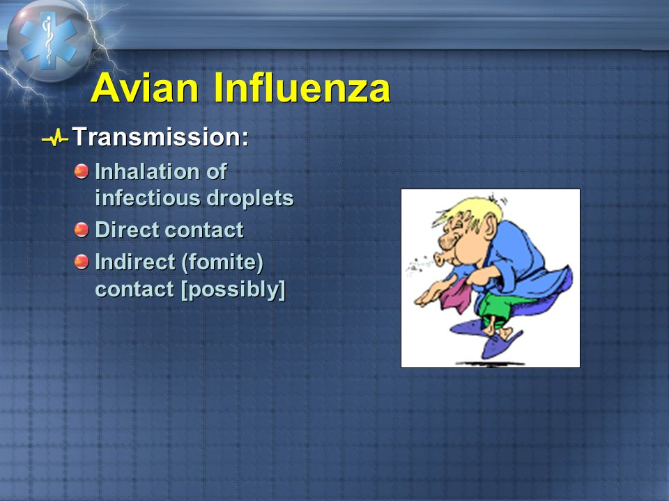Avian Influenza Transmission: Inhalation of infectious droplets