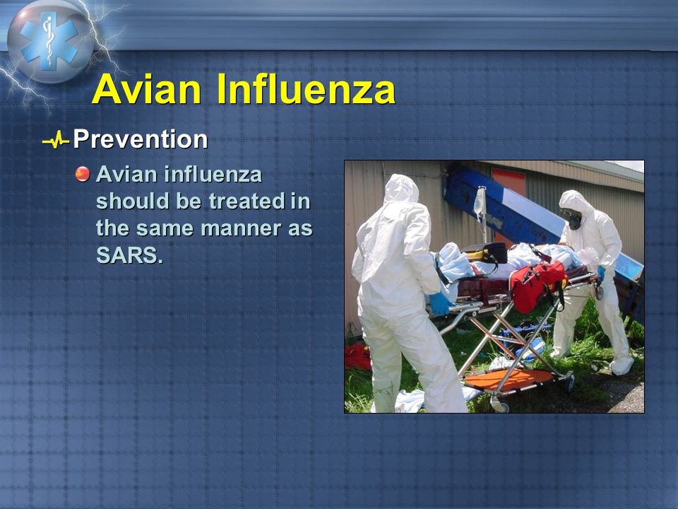 Avian Influenza Prevention
