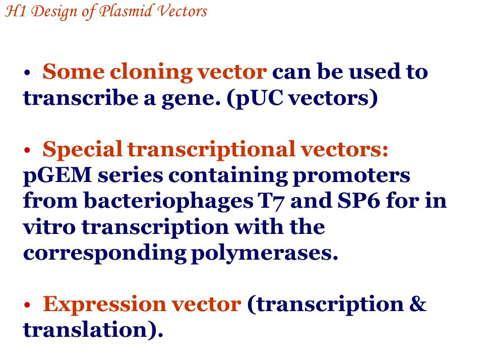 Some cloning vector can be used to transcribe a gene. (pUC vectors)