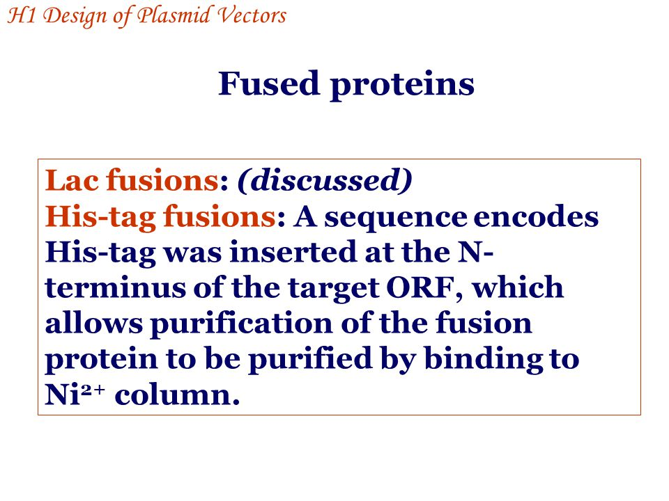 Fused proteins Lac fusions: (discussed)