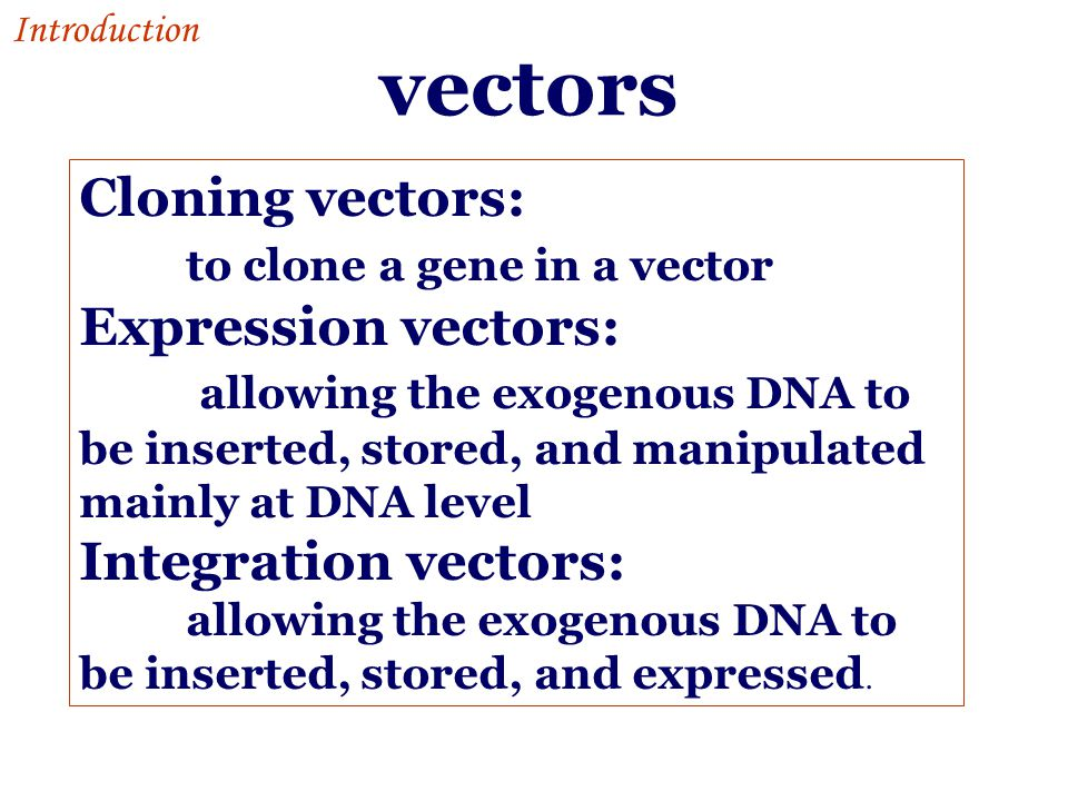 vectors Cloning vectors: to clone a gene in a vector