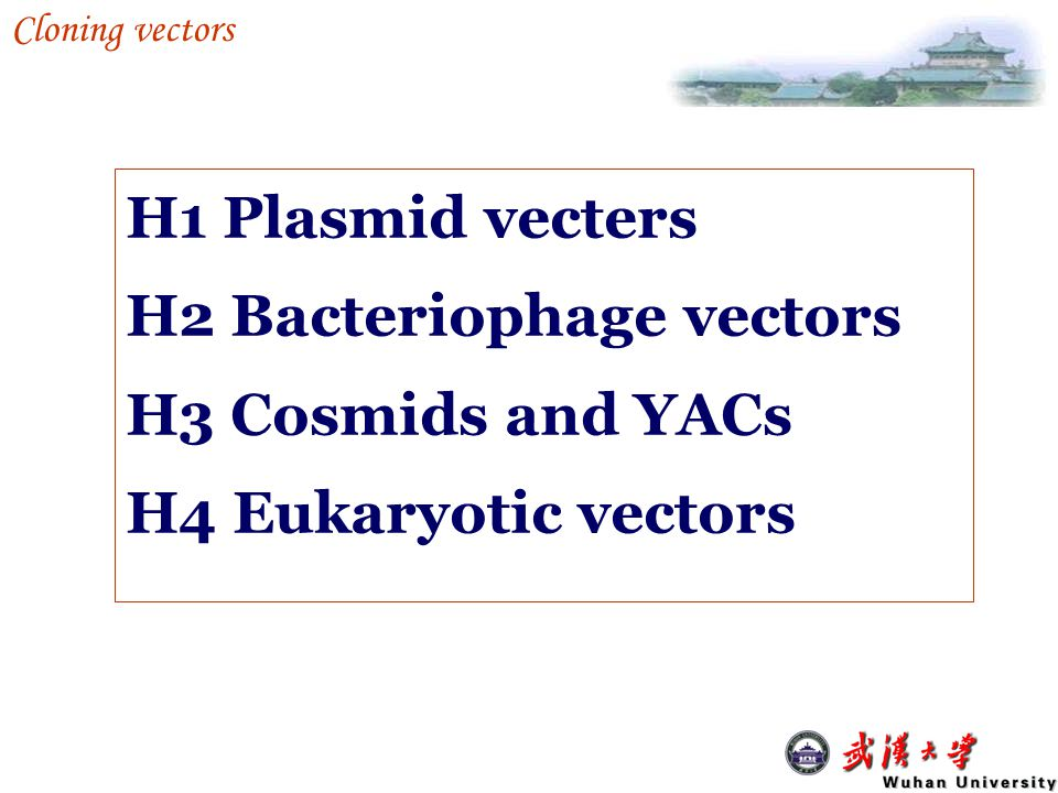H2 Bacteriophage vectors H3 Cosmids and YACs H4 Eukaryotic vectors
