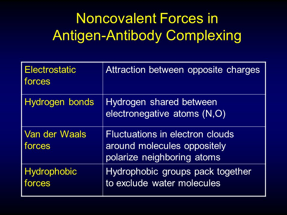 Noncovalent Forces in Antigen-Antibody Complexing