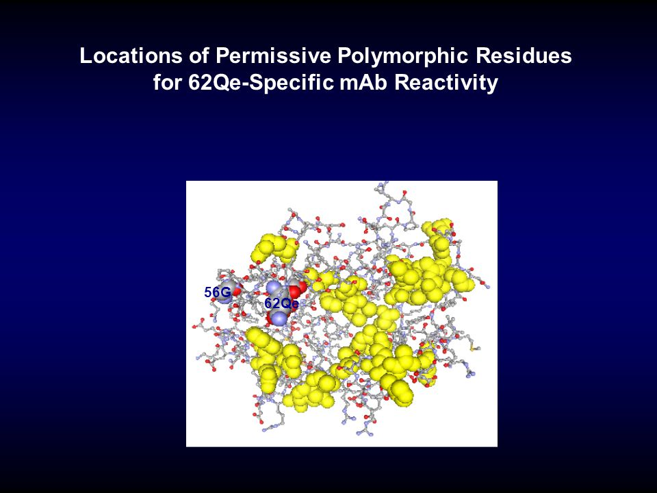 Locations of Permissive Polymorphic Residues for 62Qe-Specific mAb Reactivity