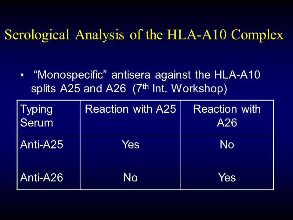 Serological Analysis of the HLA-A10 Complex