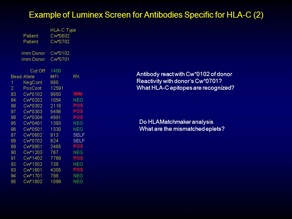 Example of Luminex Screen for Antibodies Specific for HLA-C (2)