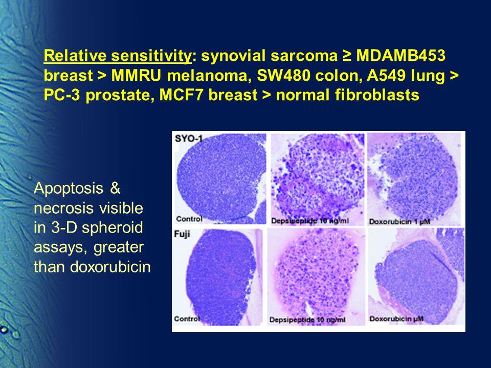 Relative sensitivity: synovial sarcoma ≥ MDAMB453 breast > MMRU melanoma, SW480 colon, A549 lung > PC-3 prostate, MCF7 breast > normal fibroblasts