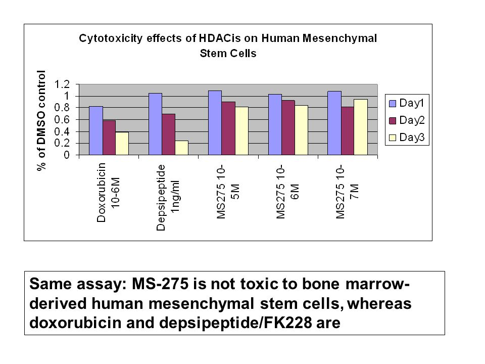 Same assay: MS-275 is not toxic to bone marrow-derived human mesenchymal stem cells, whereas doxorubicin and depsipeptide/FK228 are