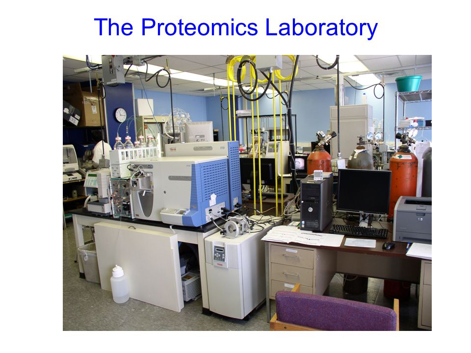 The Proteomics Laboratory