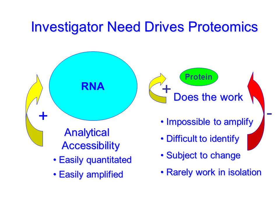 + - + Investigator Need Drives Proteomics RNA Does the work