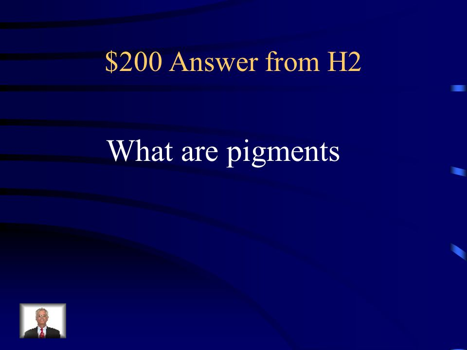 $200 Answer from H2 What are pigments