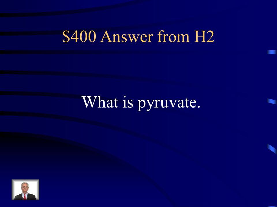 $400 Answer from H2 What is pyruvate.