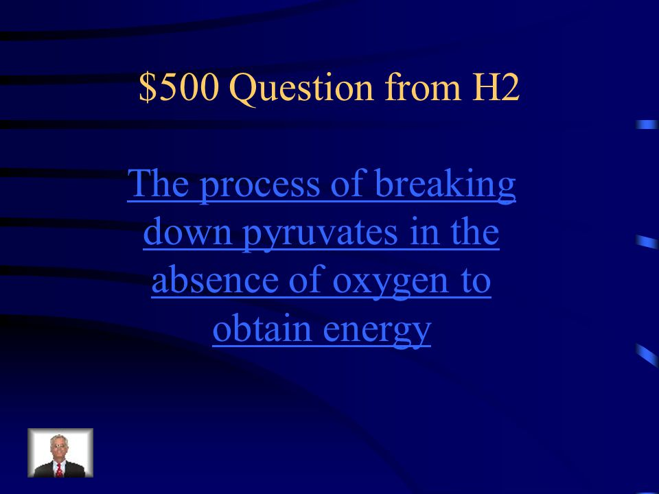 $500 Question from H2 The process of breaking down pyruvates in the absence of oxygen to obtain energy.