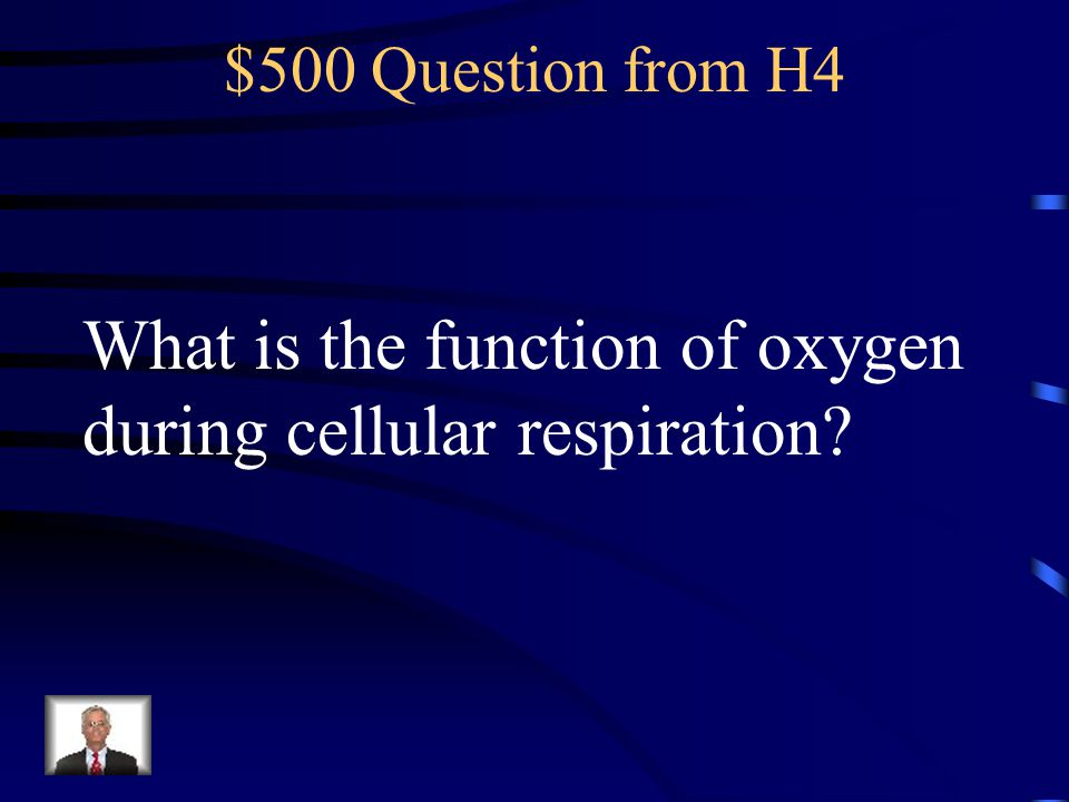What is the function of oxygen during cellular respiration