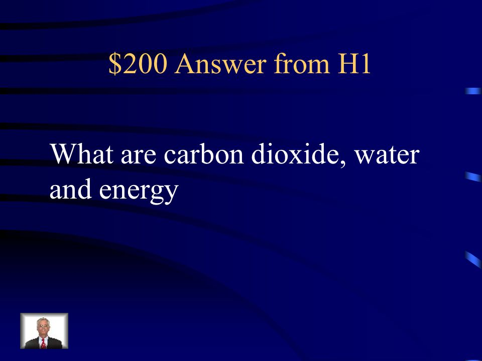 $200 Answer from H1 What are carbon dioxide, water and energy