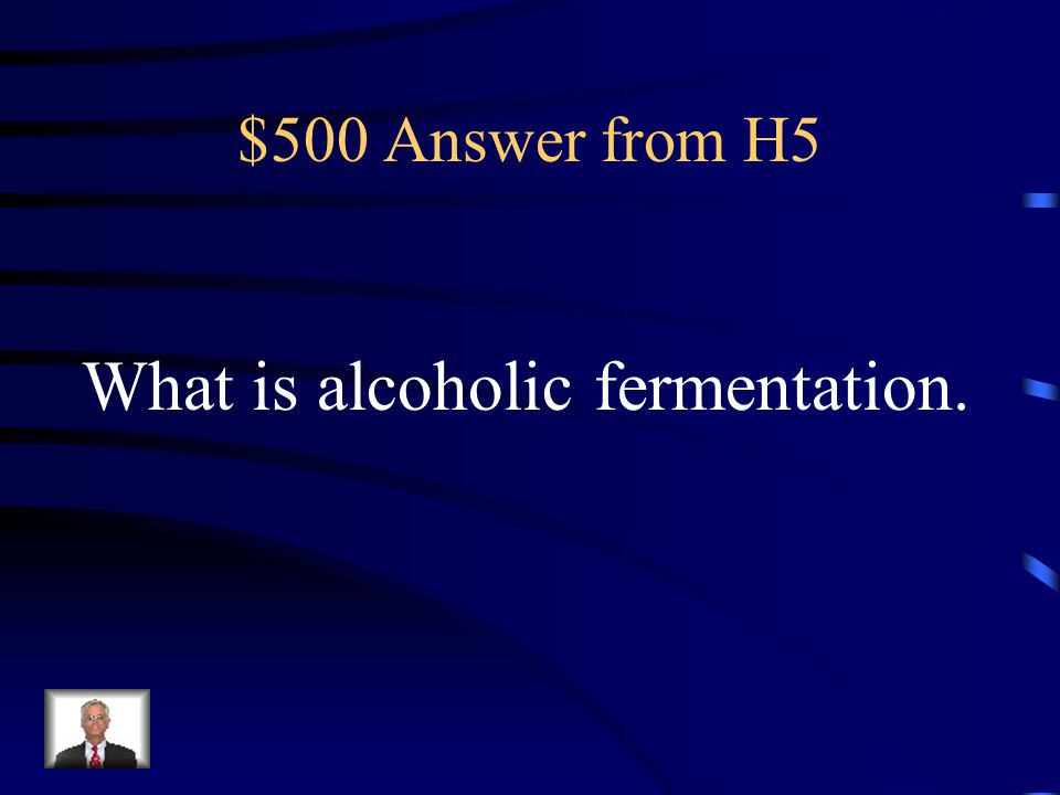 What is alcoholic fermentation.