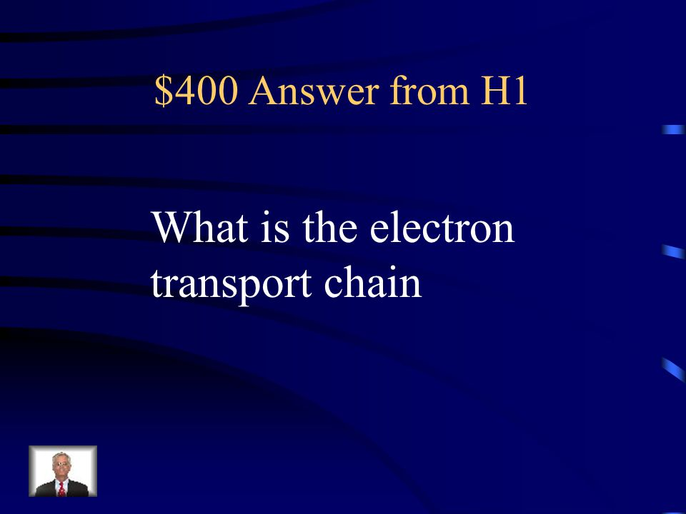 $400 Answer from H1 What is the electron transport chain