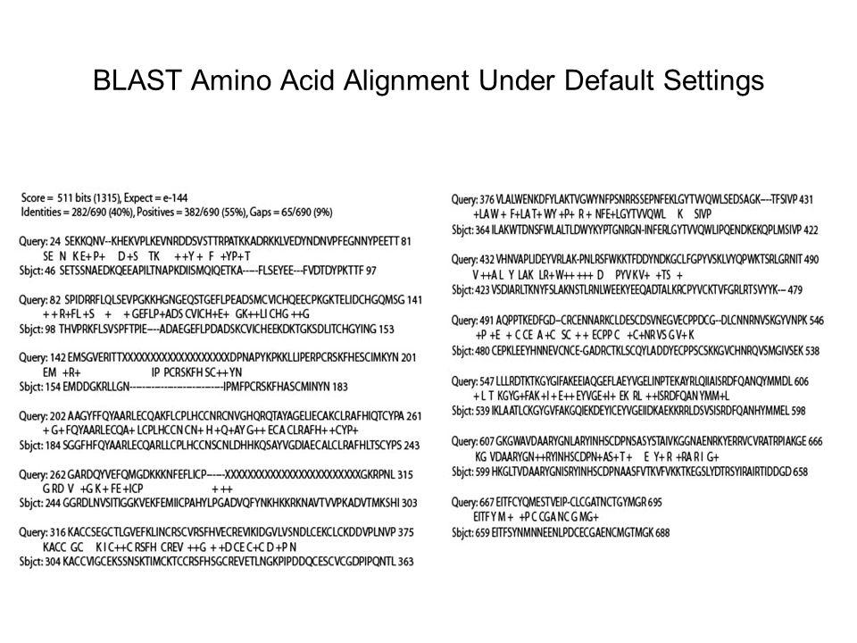 BLAST Amino Acid Alignment Under Default Settings