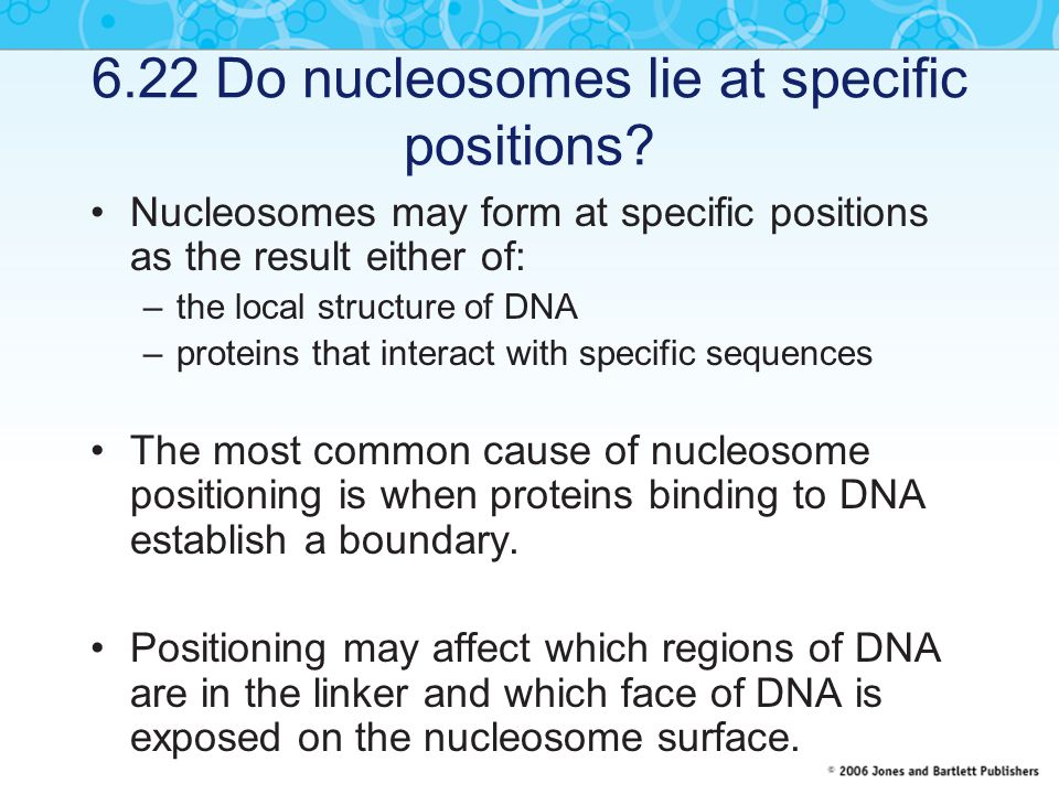 6.22 Do nucleosomes lie at specific positions