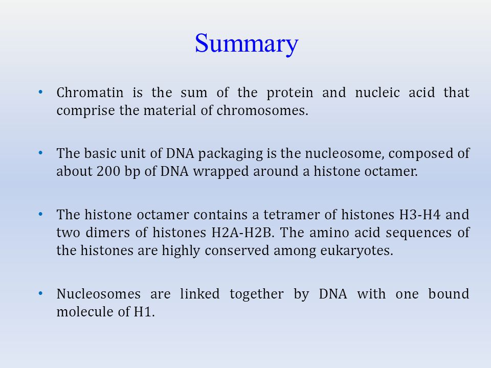 Summary Chromatin is the sum of the protein and nucleic acid that comprise the material of chromosomes.