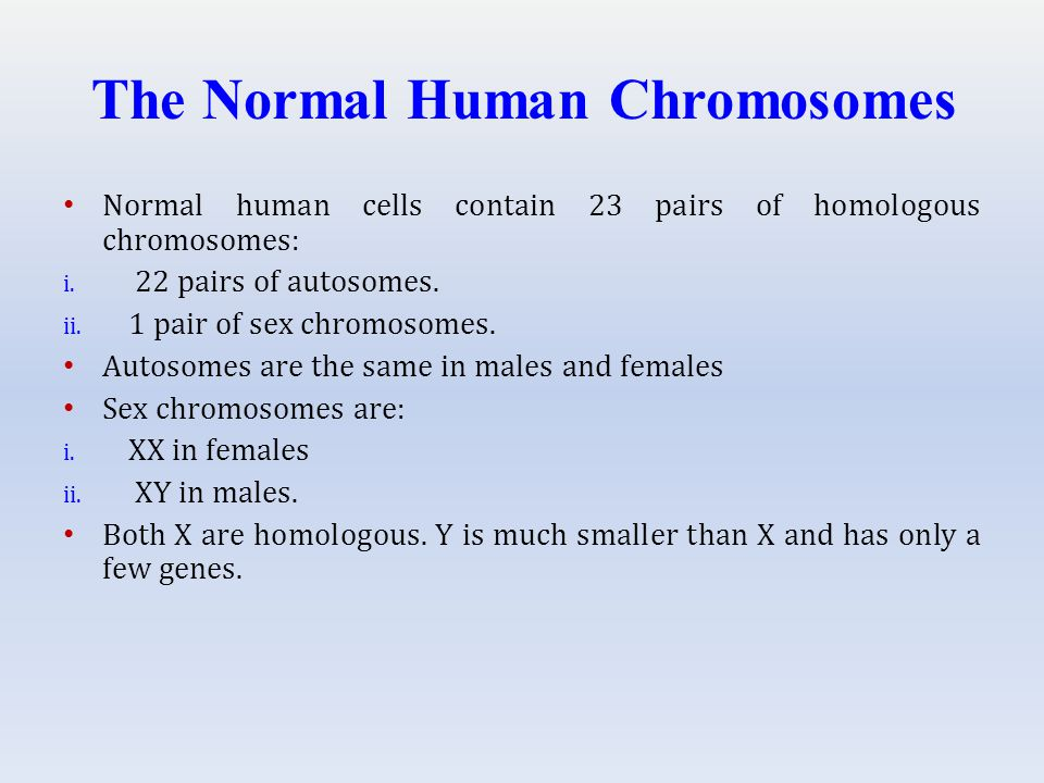 The Normal Human Chromosomes