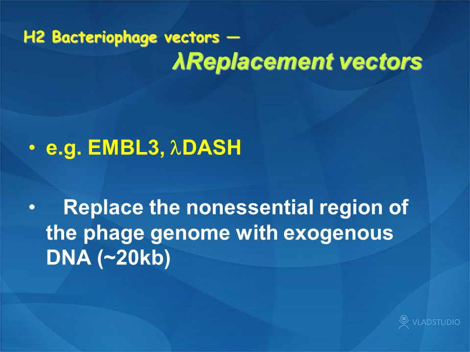 H2 Bacteriophage vectors — λReplacement vectors