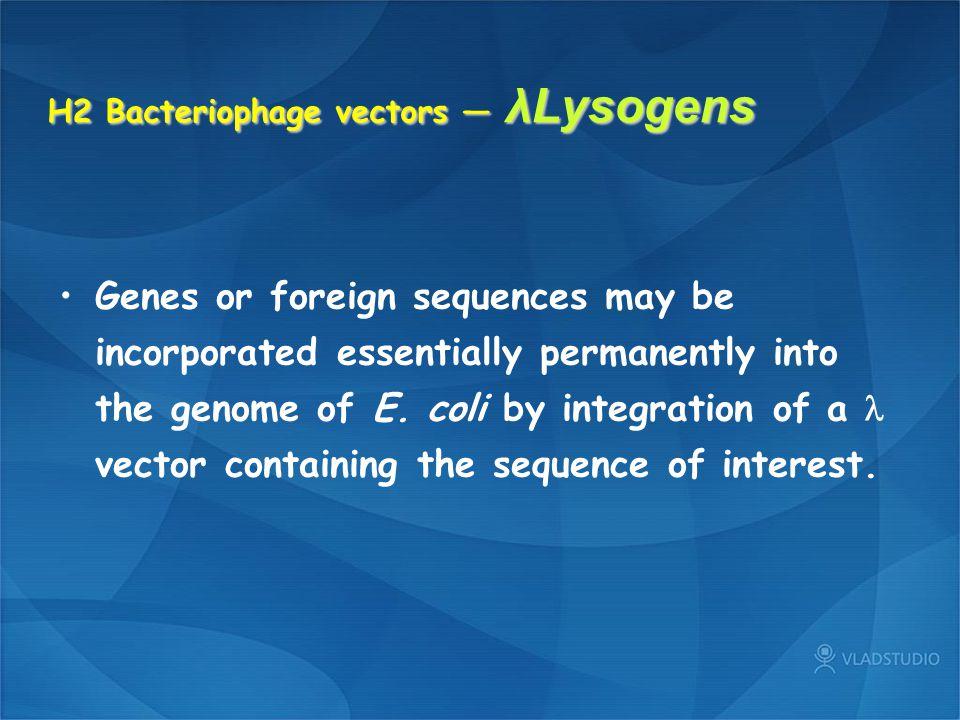 H2 Bacteriophage vectors — λLysogens