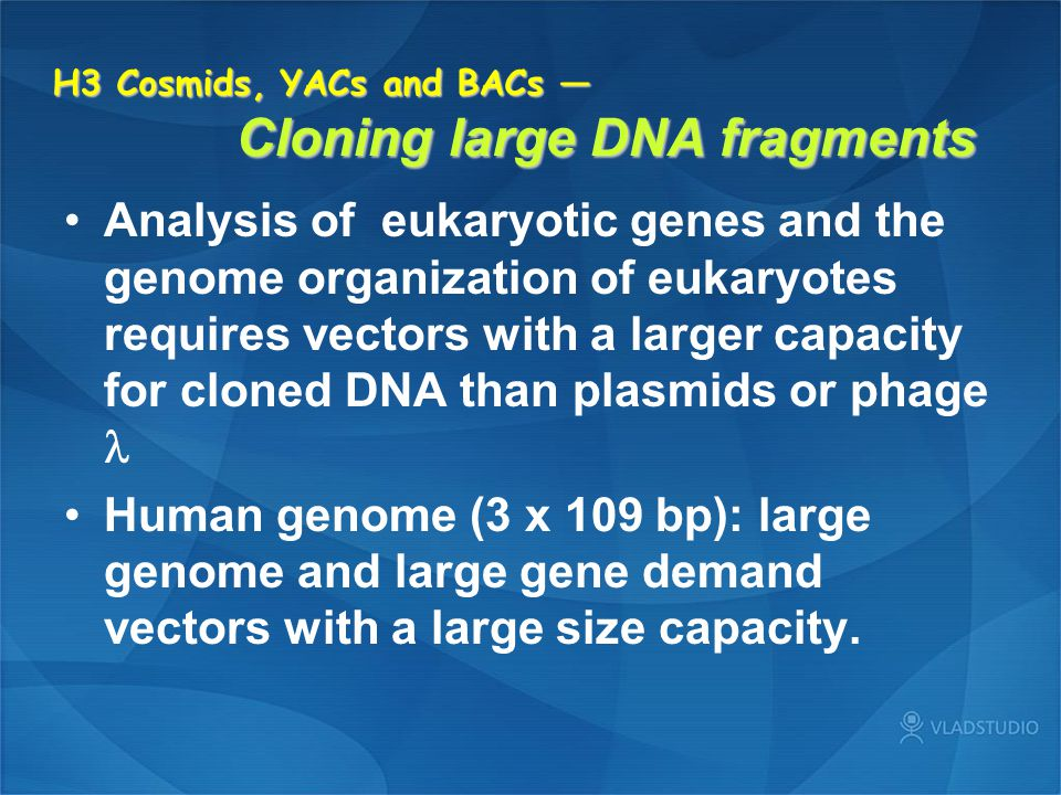H3 Cosmids, YACs and BACs — Cloning large DNA fragments