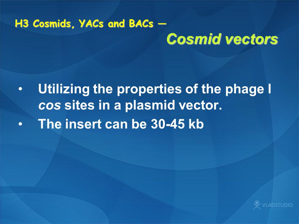 H3 Cosmids, YACs and BACs — Cosmid vectors