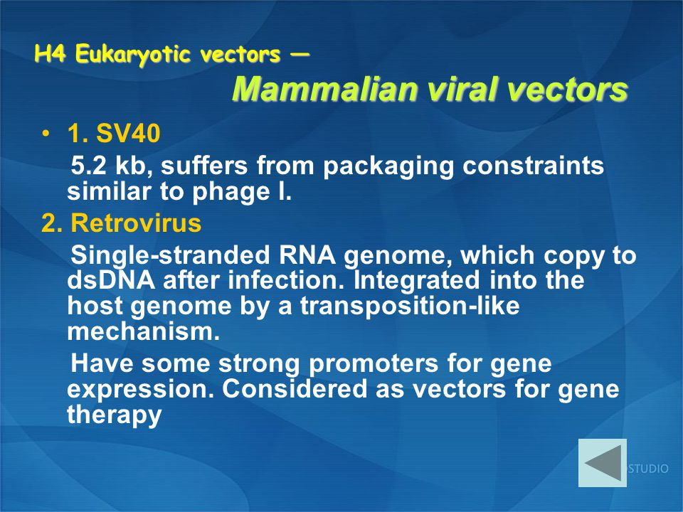 H4 Eukaryotic vectors — Mammalian viral vectors