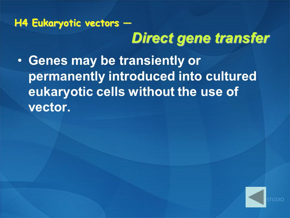 H4 Eukaryotic vectors — Direct gene transfer