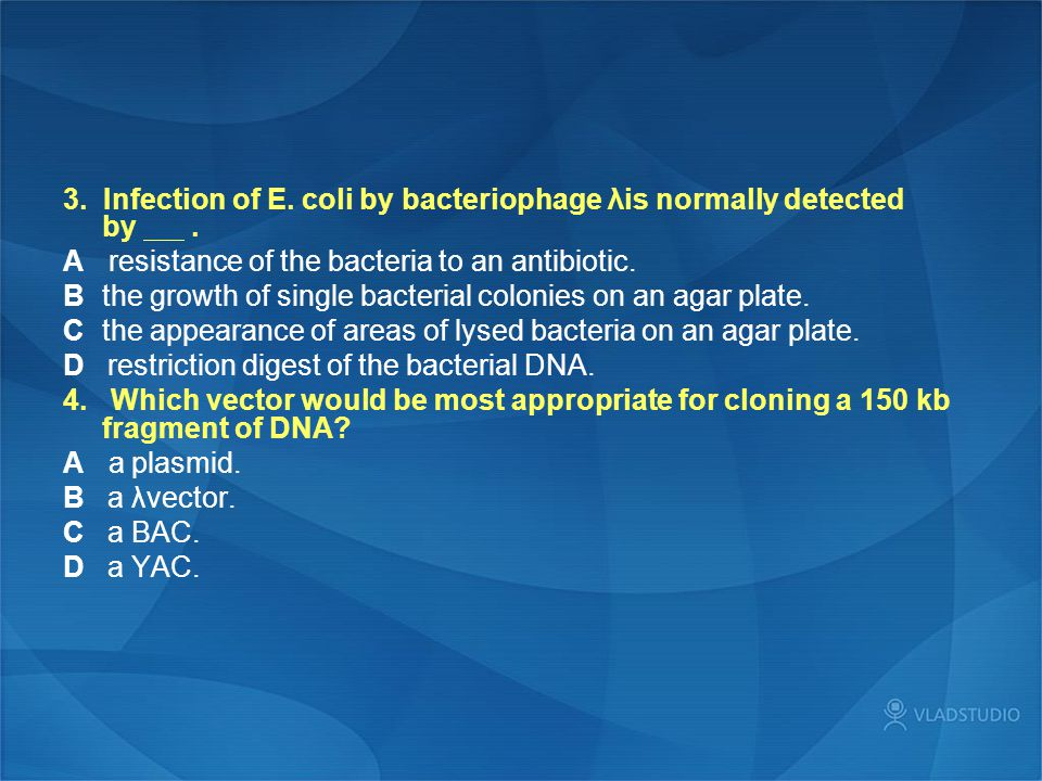 3. Infection of E. coli by bacteriophage λis normally detected by .